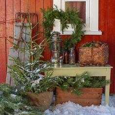 """Søgard anno 1898 🏡 Norway (@janne_paalandet) på Instagram: """"Når det nærmer seg jul, skulle jeg ønske jeg hadde ett rødt hus. Jeg bare elsker røde hus og hvit…"""" Christmas Inspiration, Ladder Decor, Plants, Home Decor, Instagram, Decoration Home, Room Decor, Plant, Home Interior Design"""