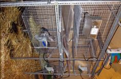 Rabbit cages. FREE plans for hutches, runs, and cages from PVC and from wire.  Also some great  realistic info on this site.