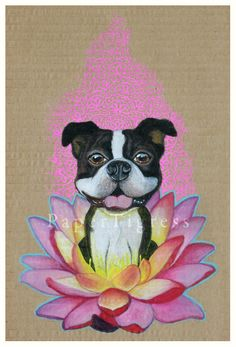 Zen Boston Terrier by papertigress.deviantart.com