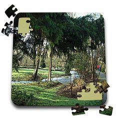 Jos Fauxtographee Realistic - Beautiful Green Scene Near the Blarney Castle in Ireland Done in a Smudge Finish and a Poster Finish - 10x10 Inch Puzzle (pzl_44115_2) 3dRose http://www.amazon.com/dp/B016EBUY7W/ref=cm_sw_r_pi_dp_Be7swb1NP06FC