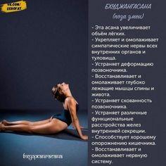 Занимайтесь йогой и будете здоровы. Fitness Del Yoga, Health Fitness, Gb Bilder, Body Stretches, New Year New Me, Chakra Meditation, Pilates Reformer, Pilates Yoga, Yoga Lifestyle
