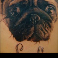 1000 images about pug tattoos on pinterest pug tattoo for Tattoo addiction albany ga