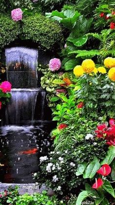"Such a beautiful waterfall, to watch and such lovely flowers, to sit and smell, ""HEAVEN"" Beautiful Nature Wallpaper, Beautiful Gif, Beautiful Landscapes, Beautiful Gardens, Beautiful Flowers, Hd Nature Wallpapers, Live Wallpapers, Gif Pictures, Nature Pictures"
