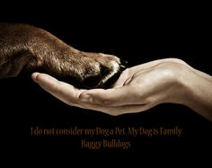 My Dog is Family♥