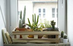 Inspírate con los mejores consejos para decorar tu casa y jardín, y hacer de ella un completo hogar. Crea tu estilo de manera sostenible y a buen precio