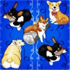 "Put some smiles on peoples face with this art design I did of my own corgi's and others.  Their expressions and pure ""Corgi"" humor is well known to all who have ever owned one.  They are happy and courageous dogs, full of love for their peoples. ;-)"