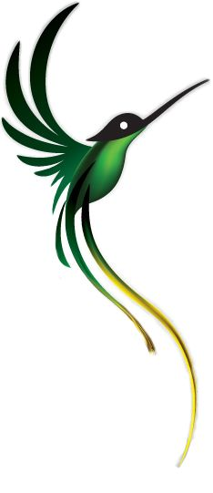 jamaican national bird clipart drawing google search drawings pinterest bird clipart. Black Bedroom Furniture Sets. Home Design Ideas