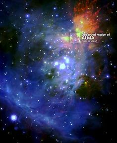 pointing out ALMA's region of observation in the Orion Nebula, via infra-red Subaru Telescope image. Subaru Telescope, Heidelberg University, Telescope Images, Catholic University, Orion Nebula, Beauty Shots, Outer Space, Astronomy, Science