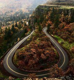 "Gefällt 1,466 Mal, 4 Kommentare - Cafe Racer And Bobber Nation (@caferacerandbobbernation) auf Instagram: ""Autumn has finally come at Rowena Crest. Every biker's dream road. I hope you guys take a ride over…"""