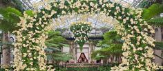 Orchid Extravaganza | Longwood Gardens. Orchid Arch in Exhibition Hall