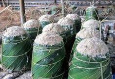 Il Pollaio delle News: In Papua apre un impianto per la produzione di sag...