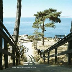 Walking trail in Torrey Pines State Park - beautiful place for a family outing.  La Jolla CA