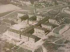 1950/1951