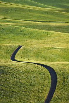 Unpaved road running through endless wheat field in Palouse, Washington