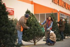A Home Depot associate helps a customer choose a real Christmas tree Real Christmas Tree, Merry Christmas To You, Xmas Tree, All Things Christmas, Holiday Fun, Christmas Holidays, Christmas Crafts, Christmas Decorations, Holiday Ideas
