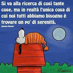 ....vero.......buonanotte!....a domani....Francesco