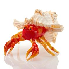 """Orange Hermit Crab Color:Orange Size:They're about 3 1/2 to 4"""" long (the sizes…"""