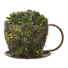 Cross Hatch Coffee Cup Planter  Price $29.99  http://efairies.com/cross-hatch-coffee-cup-planter