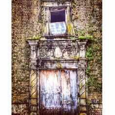 #abandoned #beautifuldecay  One of the boarded-up doorways on the back of the abandoned Baker Hotel. Ferns & moss grow riotously from the brick & stone.
