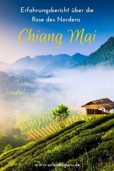 """Aufgrund der landschaftlichen Schönheit am Fluss Ping, umgeben von tropischen Wäldern, wird Chiang Mai auch als """"Rose des Nordens"""" bezeichnet. Reiselustige, die sowohl Action als auch Kultur im Urlaub erleben möchten, sollten mir in den grünen Norden von Thailand folgen. Buddhistische Tempel, eine atemberaubende Landschaft, spezielle Foodtrends und eine aufregende Kultur warten auf euch! Reisetipps gibt es in diesem Artikel."""