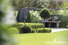 Ogród z lustrem - strona 280 - Forum ogrodnicze - Ogrodowisko