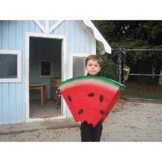 Max the Watermelon Halloween Costume