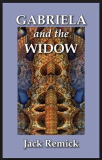 The Jag Review: Gabriela and The Widow by Jack Remick - 5 Stars: Well written, putting the reader right in the room with the characters. http://thejagreview.blogspot.com/2013/07/gabriela-and-widow.html