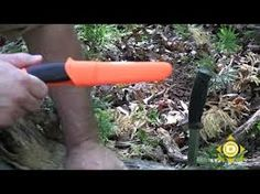 3 Key Features of the Best Survival Knife