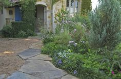 Dallas home uses tough Texas natives and adapted perennials to give it the look of an overflowing cottage garden, without the fussy care and thirsty habits of their Old World counterparts.