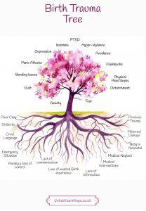 Birth Trauma Tree