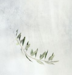 kelly leahy radding ~ watercolor olive branch | art | Pinterest ...