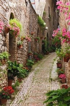 Cobble-stone pathway framed with floral greenery...