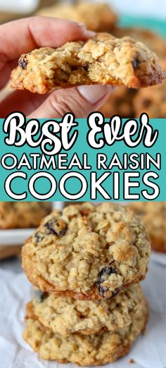 BEST Oatmeal Raisin Cookies are a staple in any cookie jar. Soft and chewy in the middle with a crisp edge, these cookies are the perfect treat! Best Oatmeal Raisin Cookies, Oatmeal Cookie Recipes, Oatmeal Dessert, Best Cookie Recipes, Good Healthy Recipes, Oatmeal Raison Cookies, Oatmeal Cookies With Applesauce, Oatmeal Raisin Chocolate Chip Cookies Recipe, Soft Chewy Oatmeal Cookies