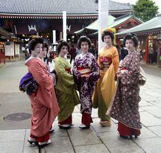 浅草芸妓連 浅草寺  asakusa  geisha at sensozji asakusa place