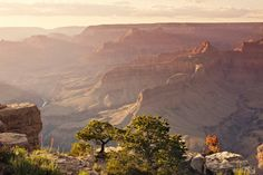 Grand Canyon // Hailey Golich Photography