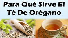 PARA QUE SIRVE EL TE DE OREGANO: Propiedades y 10 Grandes Beneficios Del...