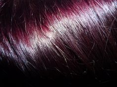 Black Cherry Hair Color : Garnier Nutrisse Black Cherry Deep Burgundy
