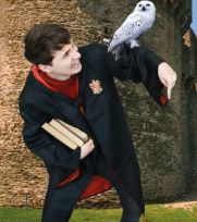 yur a wizard danny <<< Excuse me I thought the Phandom agreed he was a Slytherin.