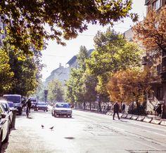 Mester street in Budapest  © Stuth Nagy Nikoletta