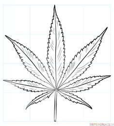 Simple Pot Leaf Drawing - How To Draw A Pot Leaf Step By Step Drawing Tutorials Marijuana Leaf Sketch At Paintingvalley Com Explore Collection Weed Leaf Sketch At Paintingvalle. Leaf Coloring, Leaf Drawing Easy, Leaf Coloring Page, Drawings, Skull Drawing Sketches, Plant Drawing, Flower Drawing Tutorials, Flower Drawing, Leaf Drawing