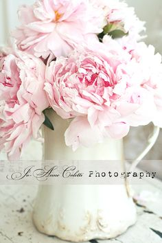 Peony Note Cards-shabby chic note cards, vintage roses, Jo-Anne Coletti