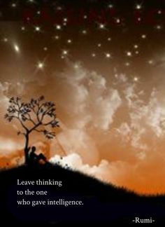 Draw & Wings. - Leave thinking to the one who gave intelligence....