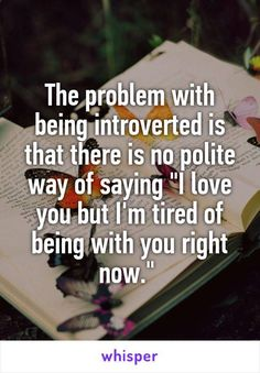 Introversion. And it definitely doesn't have anything mean behind it, we just need to be alone to recharge.