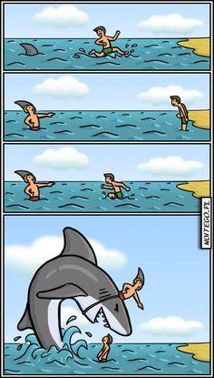 No te fíes nunca de un tiburón.