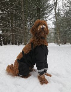 Jessie's first day in her new snow pants :)