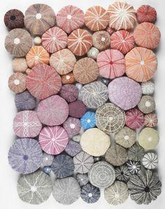 Knitted Sea Urchins _ ouriço do Mar Textiles, Jolie Photo, Textures Patterns, Textile Art, Fiber Art, Sea Shells, Needlework, Knitting Patterns, Weaving