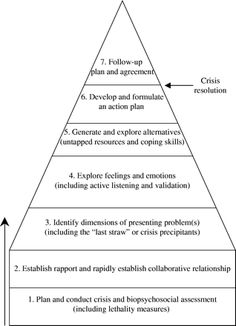 The Seven-Stage Crisis Intervention Model: A Road Map to Goal Attainment, Problem Solving, and Crisis Resolution -- Roberts and Ottens 5 (4): 329 Figure IG1 -- Brief Treatment and Crisis Intervention