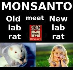 If I Had My Way I'd Castrate Every Corporate Head At Monsanto To Ensure No More Of Their Like Kind Would Ever Inhabit This World Again Ever