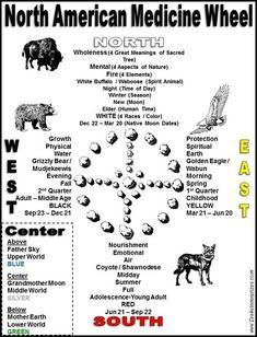 North American Medicine Wheel (based on Sun Bear) - Drake Bear Stephen Innerprizes American Indian Quotes, Native American, Would U Rather, Scouts Of America, Aboriginal People, Medicine Wheel, Drake, Spirituality, History