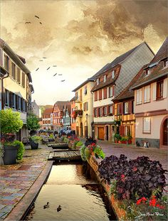 Barr, Alsace, France Travel and see the world Places Around The World, Oh The Places You'll Go, Travel Around The World, Cool Places To Visit, Around The Worlds, Vacation Places, Places To Travel, Wonderful Places, Beautiful Places